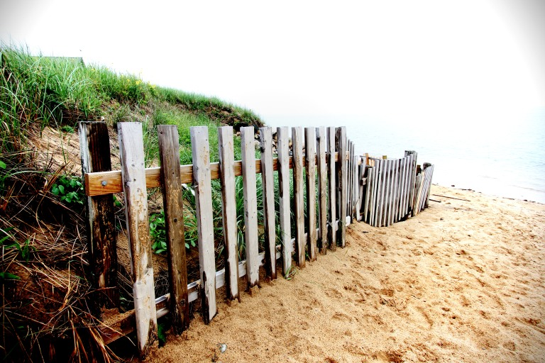 I always have loved the idea of visiting Cape Cod.